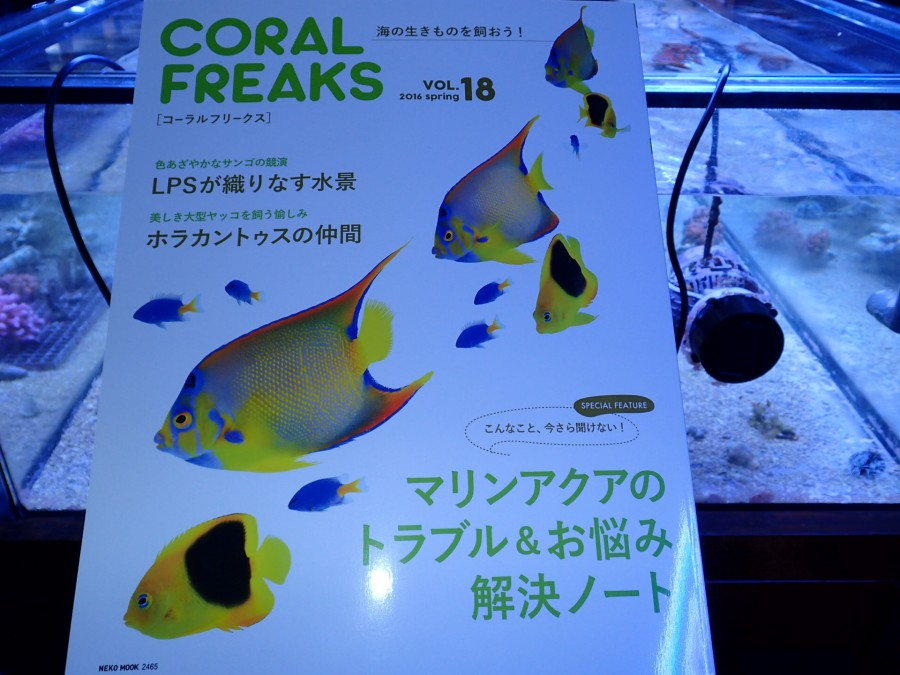 20160426 coral